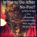 What to do after No-Poo?